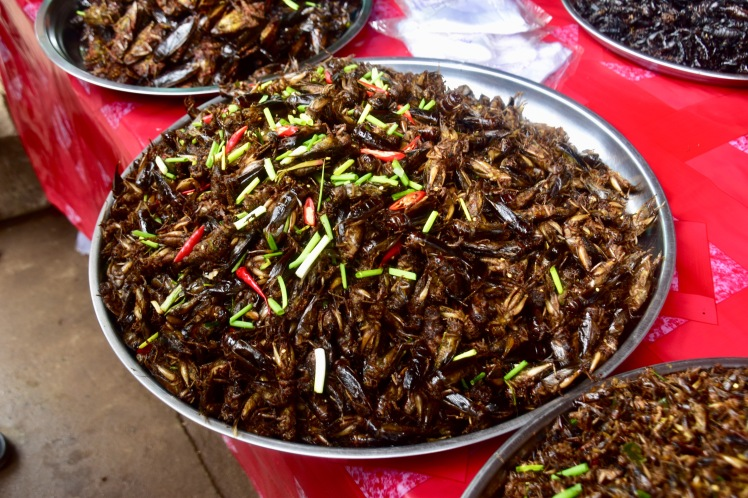 Bowl of fried crickets